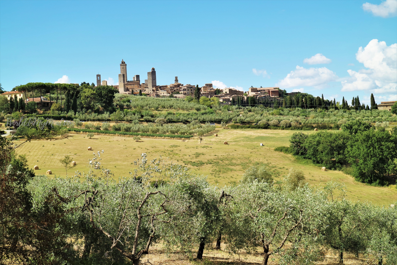 Wine region, Tuscany: San Gimignano
